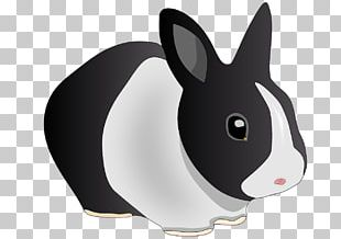 Domestic Rabbit Hare Holland Lop Easter Bunny PNG