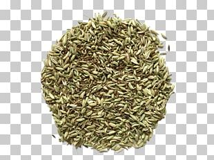 Chia Seed Salvia Hispanica Omega-3 Fatty Acid PNG