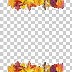 Ojo Travieso Maple Leaf Autumn Leaves PNG