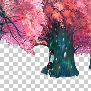 Cherry Blossom Comics Illustration PNG