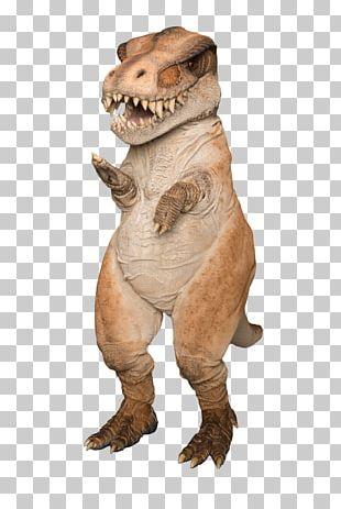 Snout Mascot Fur Dinosaur PNG