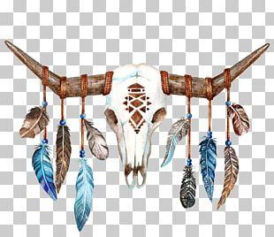 Texas Longhorn Skull Bull Boho-chic PNG