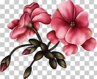 Flower Bouquet Animation Floral Design PNG