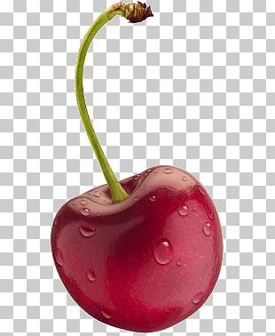 Isolated Cherry With Water PNG