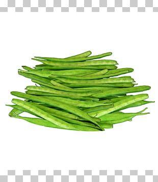 Dal Guar Organic Food Bean Vegetable PNG