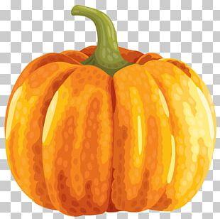 Cucurbita Pepo Calabaza Pumpkin PNG