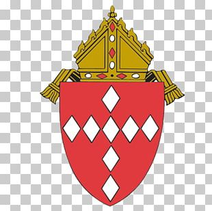 Roman Catholic Diocese Of Raleigh John Paul II Catholic High School Holy Name Of Jesus Cathedral Catholicism PNG