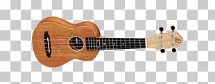 Steel-string Acoustic Guitar String Instruments Musical Instruments PNG
