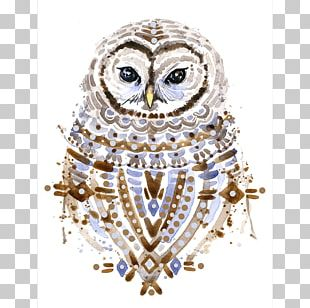 Owl Watercolor Painting Photography PNG