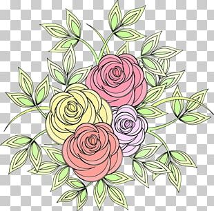 Garden Roses Cut Flowers PNG