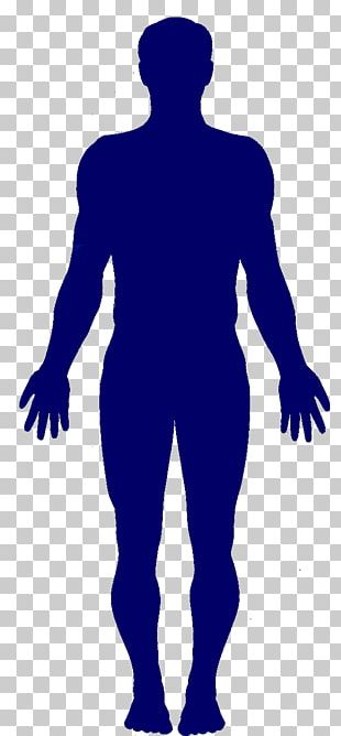 Human Body Stock Photography PNG
