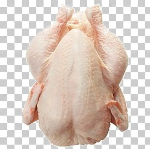 Chicken As Food Buffalo Wing Frozen Food Poultry PNG