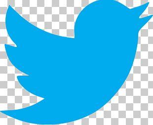Logo Advertising Agency Social Media Public Relations PNG