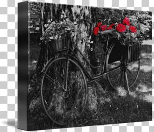 Black And White Monochrome Photography Gallery Wrap Motor Vehicle PNG