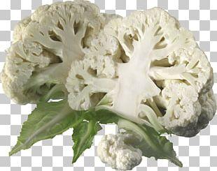 Cauliflower Slices PNG