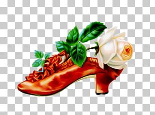 Flower Vintage Clothing Shoe PNG
