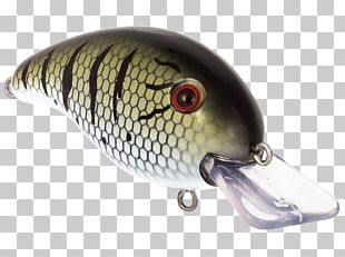 Spoon Lure Fishing Baits & Lures Plug Perch Water PNG