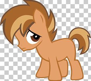Horse Pony Mammal Cat Carnivora PNG
