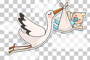 White Stork Infant Baby Shower PNG