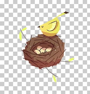 Bird Nest PNG