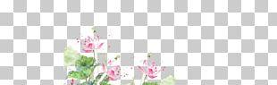 Floral Design Cut Flowers Plant Stem Petal PNG