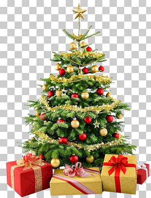 Stock Photography Christmas Tree PNG