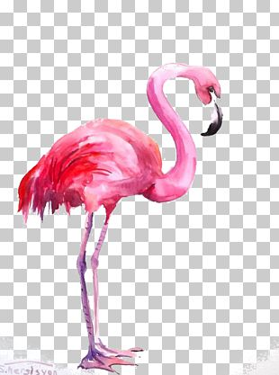 Flamingo Watercolor Painting PNG
