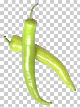 Serrano Pepper Jalapexf1o Cayenne Pepper Bell Pepper Chili Pepper PNG
