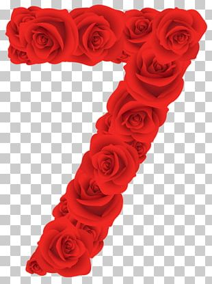 Red Roses Seven Number PNG