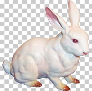 Domestic Rabbit Easter Bunny Snowshoe Hare Porcelain PNG