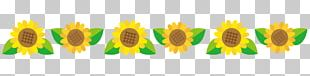 Sunflower Flower Line Material. PNG