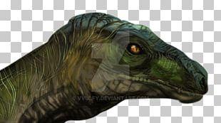 Velociraptor Tyrannosaurus Jurassic Park Fan Art Dinosaur PNG