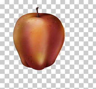 Apple Fruit Auglis PNG