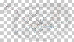 Circle Diagram PNG