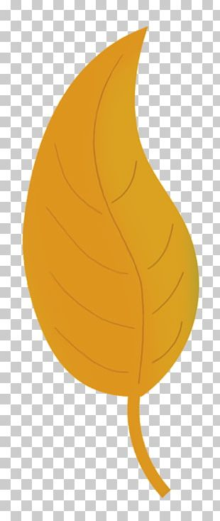 Autumn Leaf Color Yellow Drawing PNG