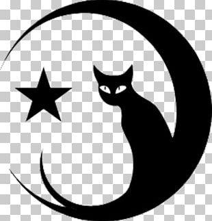 Sphynx Cat Moon Kitten Mouse Black Cat PNG