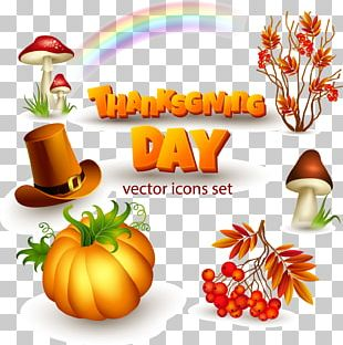 Thanksgiving Day Icon PNG