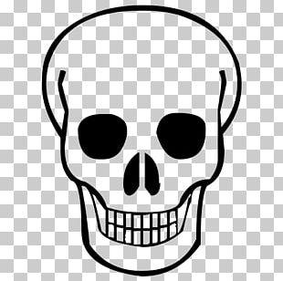 Skull Calavera PNG