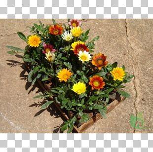 Flower Bouquet Floristry Floral Design Artificial Flower PNG