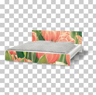 Sofa Bed Couch Furniture Bed Frame PNG