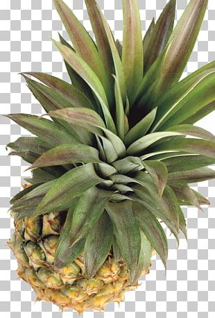 Pineapple Tropical Fruit Papaya PNG