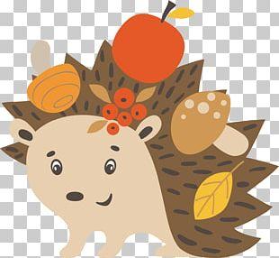 Hedgehog Autumn Illustration PNG