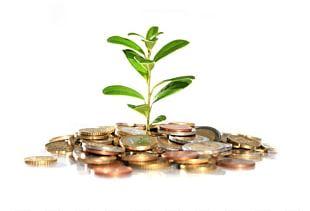 Money Devil's Ivy Investment Bank Plant PNG