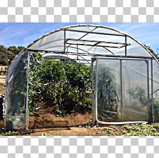 Shade Canopy Greenhouse Shed PNG