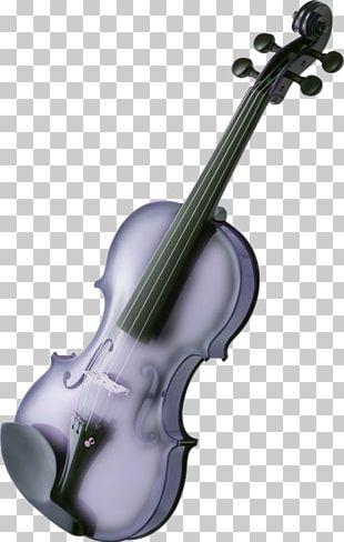 Musical Instrument Violin Viola String Instrument PNG