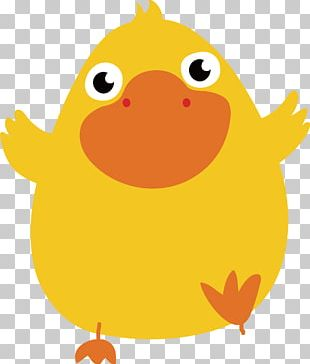 Duck Cartoon Illustration PNG
