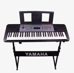 Keyboard Instruments Piano Music PNG