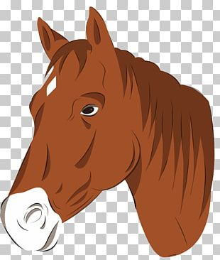 Mustang Pony Horse Head Mask PNG
