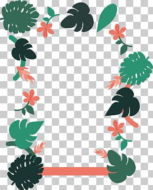 Green Banana Leaves Border PNG