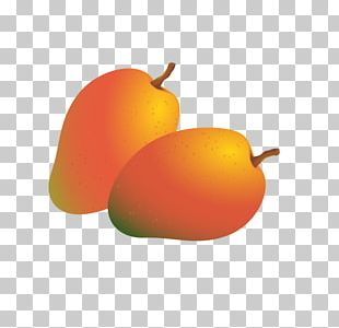 Mango Fruit Auglis PNG